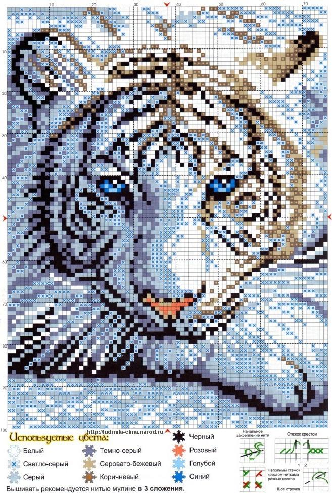 вышивка Бенгальский тигр